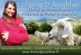 FERME D'AMALTHEE