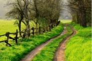 Trouvez votre voie, Transformez votre vie !